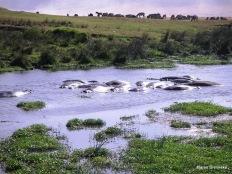 Ngorongoro, Tansania