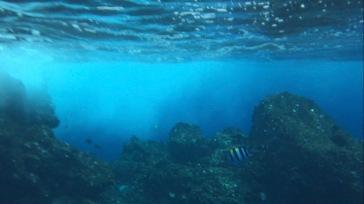 Haiwaii Ovean Rafting