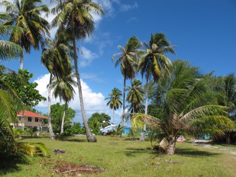 Umgebung im Dorf