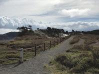 Volcano NP