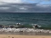 Beach,Baby Beach