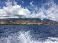 Haiwaii Ovean Rafting-Maui