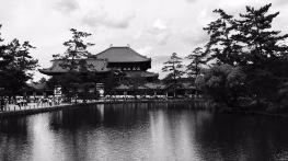 Nara, Todaiji Tempel, größter Tempel der Welt aus Holz