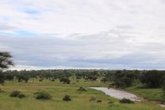 Tarangire NP