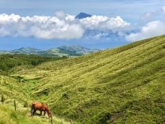 Faial , im Hintergrund: Pico