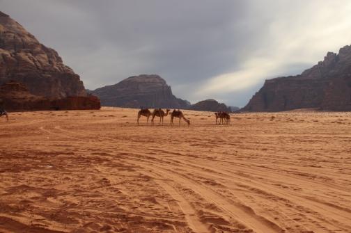 Für Kamele gibt's Gebete für die Reiter einen Gott