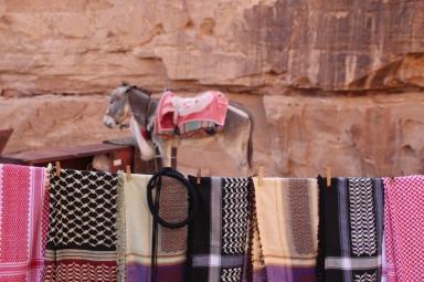 Erstaunlich wo die Esel überall gehen können