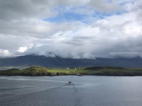 Hafen Reykjavik