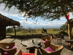 Maasai Lodge